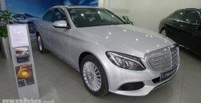Cần bán lại xe Mercedes Exclusive đời 2015, màu bạc, nhập khẩu chính hãng, chính chủ giá 1 tỷ 390 tr tại Tp.HCM