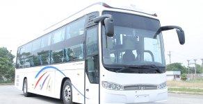Xe giường nằm Daewoo BX 212 vừa cập bến, hàng chính hãng, giá rẻ, giao ngay giá 1 tỷ 300 tr tại Tp.HCM