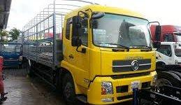 Bán xe tải Dongfeng B170, giá tốt giá 705 triệu tại Tp.HCM