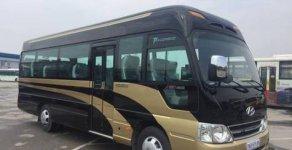 Bán County Limousine thân dài sản xuất 2018 nhập khẩu giá 1 tỷ 310 tr tại Hà Nội