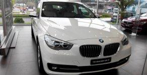 Xe Mới BMW 5 528i 2.0 Gran Turismo 2018 giá 2 tỷ 549 tr tại Cả nước