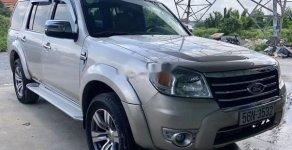 Cần bán Ford Everest 4x2 AT sản xuất năm 2009, màu bạc, 510tr giá 510 triệu tại Tp.HCM