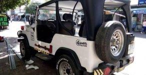 Cần bán gấp Jeep Wrangler năm 2002, màu trắng, nhập khẩu giá 140 triệu tại Tp.HCM