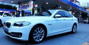 BMW 5 Series 520i năm sản xuất 2016 giá 1 tỷ 650 tr tại Tp.HCM