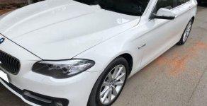 Bán BMW 5 Series 520i 2016, màu trắng, xe nhập số tự động giá 1 tỷ 590 tr tại Tp.HCM