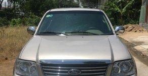 Cần bán gấp Ford Escape đời 2006 màu xám bạc giá 235 triệu tại Tp.HCM