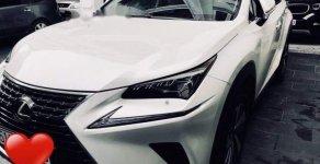 Bán Lexus NX 300T 2017, màu trắng, nhập khẩu giá 2 tỷ 595 tr tại Tp.HCM