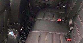 Bán xe Ford EcoSport Titanium 1.5L AT 2016, màu trắng  giá 551 triệu tại Tp.HCM