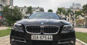 Bán xe BMW 5 Series 520i đời 2015, màu đen, nhập khẩu nguyên chiếc giá 1 tỷ 585 tr tại Hà Nội