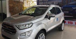 Bán Ford EcoSport 1.5L Titanium, giá cạnh tranh, đủ màu giao ngay, LH 0902172017-Em Mai giá 620 triệu tại Tp.HCM