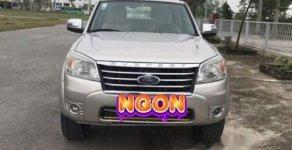 Cần bán xe Ford Everest sản xuất năm 2010, màu bạc giá 445 triệu tại Nghệ An