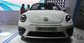 Bán Beetle Dune Beetle Dune, xe Đức nhập khẩu nguyên chiếc giá 1 tỷ 469 tr tại Khánh Hòa