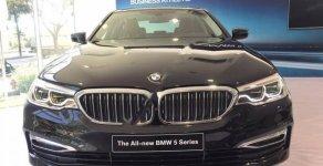 Cần bán BMW 5 Series 530i 2019, màu đen, xe nhập khẩu  giá 3 tỷ 69 tr tại Tp.HCM