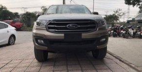 Bán xe Ford Everest năm sản xuất 2019, màu xám, nhập khẩu  giá 950 triệu tại Hà Nội