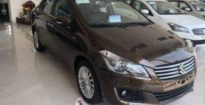 Bán xe Suzuki Ciaz đời 2018, màu nâu, xe nhập giá 499 triệu tại Hà Nội