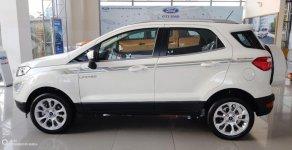 Ford EcoSport Titanium, mới 100%, màu trắng, giá 630tr- Miễn phí chi phí lăn bánh toàn quốc giá 630 triệu tại Tp.HCM