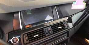Bán xe BMW 5 Series 523i năm 2011, màu nâu, nhập khẩu   giá 895 triệu tại Tp.HCM