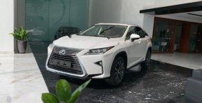 Bán xe Lexus RX 300 đời 2019, màu trắng, nhập khẩu nguyên chiếc giá 3 tỷ 40 tr tại Hà Nội