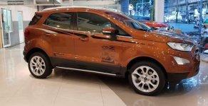 Cần bán Ford EcoSport Titanium đời 2019 giá 618 triệu tại Tp.HCM