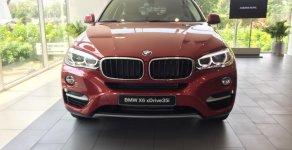 Bán xe BMW X6 sản xuất 2018 giá 3 tỷ 969 tr tại Tp.HCM