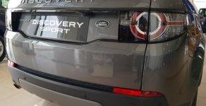 Bán ô tô LandRover Discovery Sport SE đời 2019, màu xám, xe có sẵn giao ngay giá 2 tỷ 699 tr tại Tp.HCM