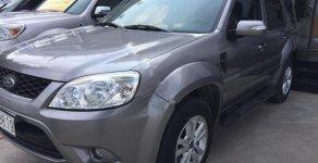 Bán ô tô Ford Escape XLT sản xuất năm 2013, màu xám, xe cá nhân sử dụng kỹ ít trầy xước giá 560 triệu tại Tp.HCM