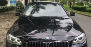 Cần bán xe BMW 528 AT model 2011, màu đen, nhập khẩu giá 795 triệu tại Tp.HCM