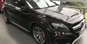 Bán ô tô Mercedes GLA 45 AMG đời 2016, màu nâu, nhập khẩu giá 2 tỷ 220 tr tại Tp.HCM