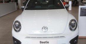 Xe hơi thể thao Volkswagen - Beetle giá 1 tỷ 499 tr tại Tp.HCM