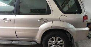 Cần bán gấp Ford Escape đời 2009 còn mới giá 400 triệu tại Tp.HCM