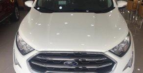 Nhận ngay Ford Ecosport 2019 - Chỉ cần trả trước 130 triệu giá 545 triệu tại Tp.HCM