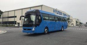 Bán Hyundai Universe đời 2019, màu xanh lam giá 3 tỷ 180 tr tại Long An