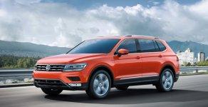 Xe Đức nhập khẩu nguyên chiếc - Volkswagen Tiguan Cam TSI 2.0 giá 1 tỷ 729 tr tại Tp.HCM