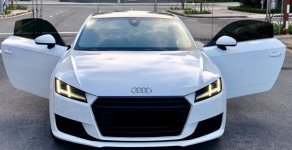 Cần bán lại xe Audi TT sản xuất 2015, màu trắng nhập giá 1 tỷ 600 tr tại Tp.HCM