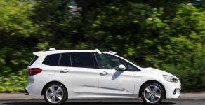 Cần bán lại xe BMW 2 Series Gran Tourer 218i sản xuất 2016, màu trắng, nhập khẩu   giá 1 tỷ 200 tr tại Hà Nội