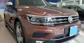 Volkswagen Tiguan nâu và xanh rêu - Phiên bản giới hạn giá 1 tỷ 729 tr tại Tp.HCM