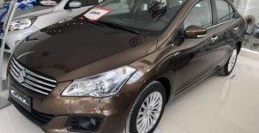 Bán Suzuki Ciaz sản xuất năm 2019, màu nâu, nhập khẩu giá 499 triệu tại Tp.HCM