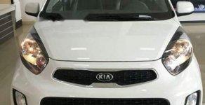 Bán ô tô Kia Morning EXMT sản xuất 2019, màu trắng giá 297 triệu tại Bình Dương