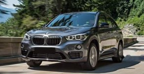 Bán BMW X1 xDrive năm sản xuất 2019, nhập khẩu   giá 1 tỷ 960 tr tại Tp.HCM