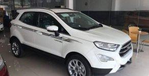 Bán ô tô Ford EcoSport Ambiente 1.5 MT đời 2019, màu trắng giá 545 triệu tại Tp.HCM