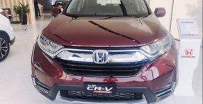 Bán xe Honda CR V đời 2019, màu đỏ, nhập khẩu   giá 1 tỷ 93 tr tại Tp.HCM