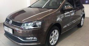 Bán Volkswagen Polo 1.6AT 2019, màu nâu, xe nhập giá 695 triệu tại Tp.HCM
