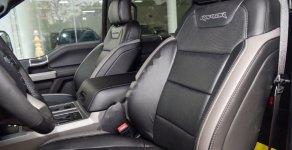 Bán xe Ford F 150 Raptor sản xuất năm 2019, màu đen, nhập khẩu giá 4 tỷ 250 tr tại Tp.HCM