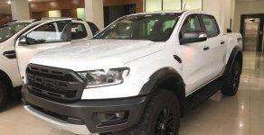 Cần bán xe Ford Ranger 2.0L 4x4 AT năm 2019, màu trắng, nhập khẩu nguyên chiếc giá 2 tỷ 163 tr tại Hà Nội