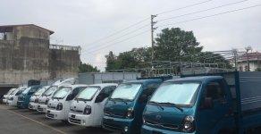 Mua Trong tháng giảm ngay 50% phí trước bạ Kia K200 giá 348 triệu tại Hải Phòng