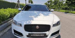 Bán Jaguar XF Pure sản xuất năm 2018, màu trắng, nhập khẩu  giá 1 tỷ 950 tr tại Hà Nội