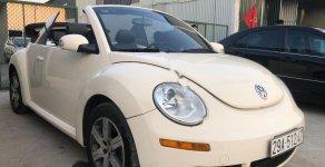 Bán ô tô Volkswagen Beetle 2005, màu trắng, xe nhập số tự động giá 385 triệu tại Hải Dương