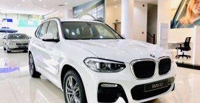 Ưu đãi đến 75 triệu đồng khi mua chiếc BMW X3 xDrive20i, đời 2019, màu trắng, nhập khẩu giá 2 tỷ 499 tr tại Tp.HCM
