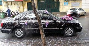 Bán Hyundai XG đời 2005, xe nhập, giá 280tr giá 280 triệu tại Hà Nội
