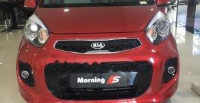 Cần bán Kia Morning đời 2019, màu đỏ giá 393 triệu tại Khánh Hòa